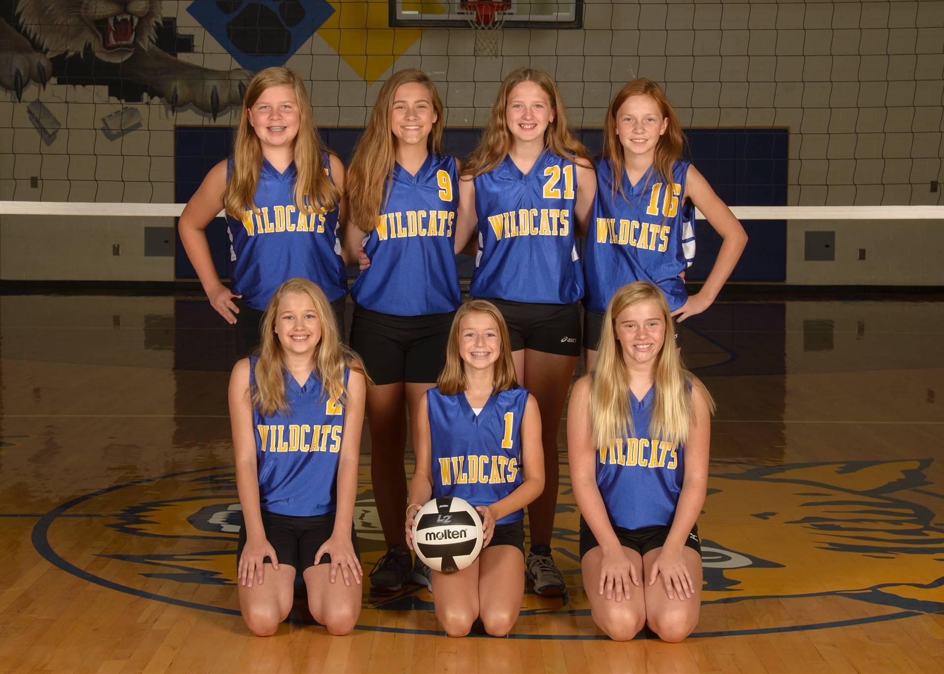 7th Grade Volleyball Photo