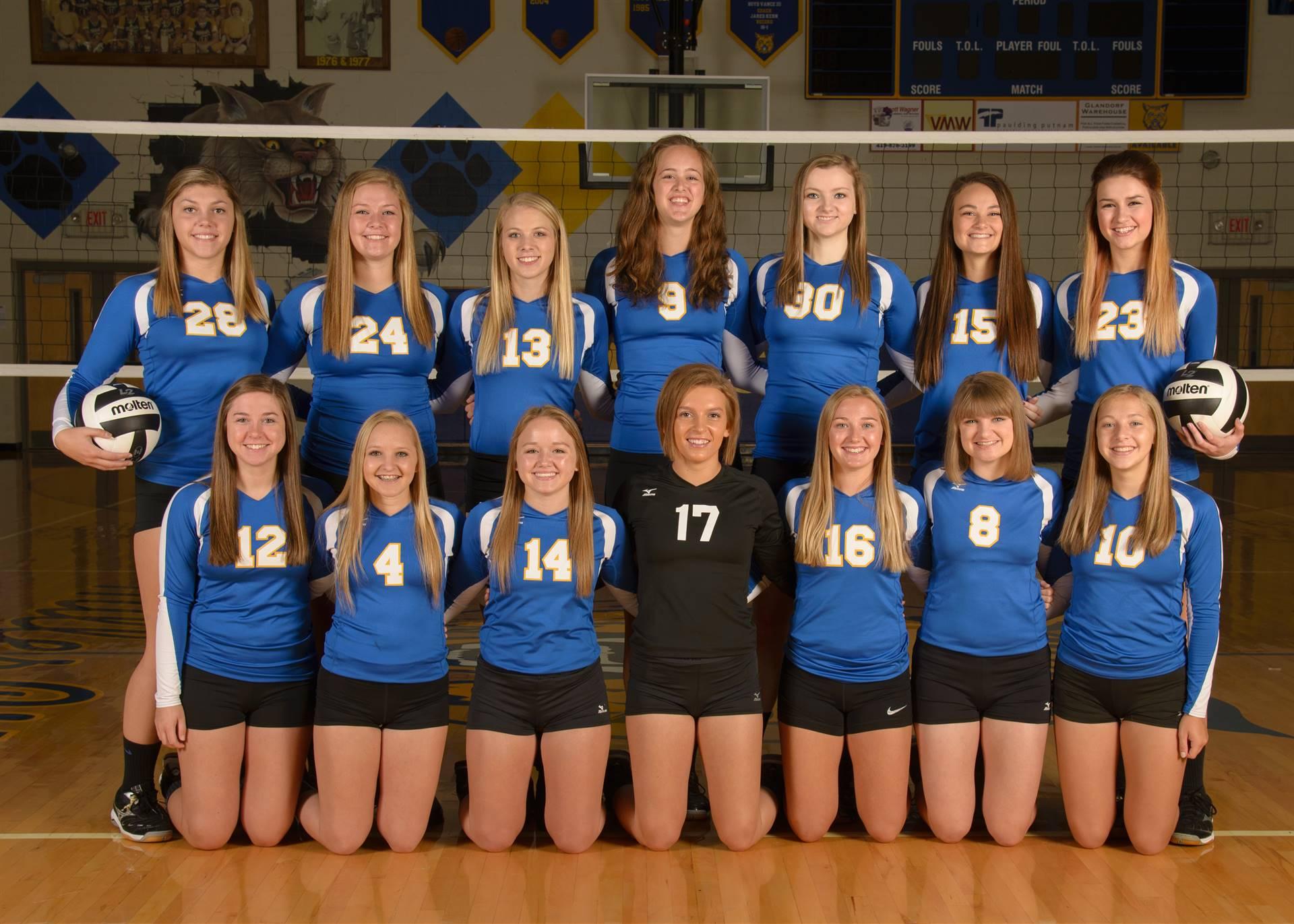 Varsity Volleyball Photo